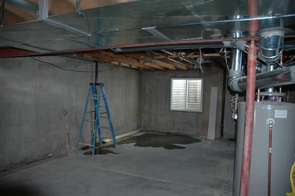 inelegant basement